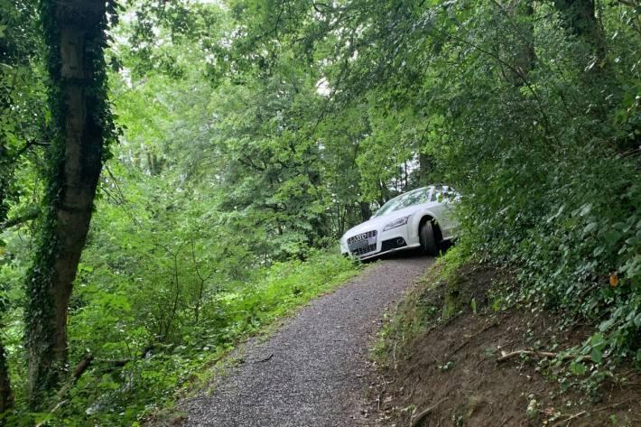 Die Autolenkerin ist mit ihrem Audi in Gamprin FL auf Abwegen geraten-