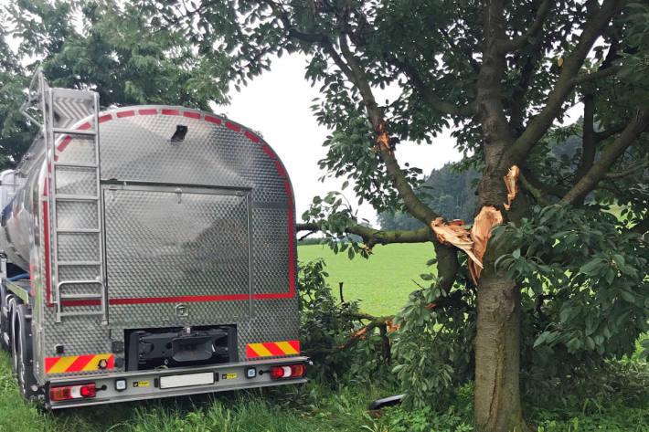 Der Milchtransporter prallte frontal in einen Kirschbaum.
