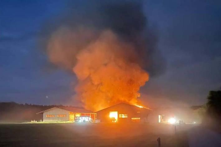 Den Angehörigen der Feuerwehr Herzogenbuchsee gelang es, den Brand unter Kontrolle zu bringen