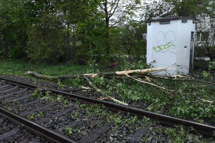 Zug kollidiert mit einem umgestürzten Baum im Bahngleis in Cloppenburg