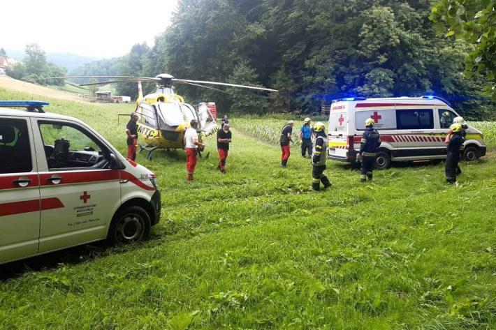Bei Forstarbeiten wurde in Gnas ein 62-Jähriger schwer verletzt