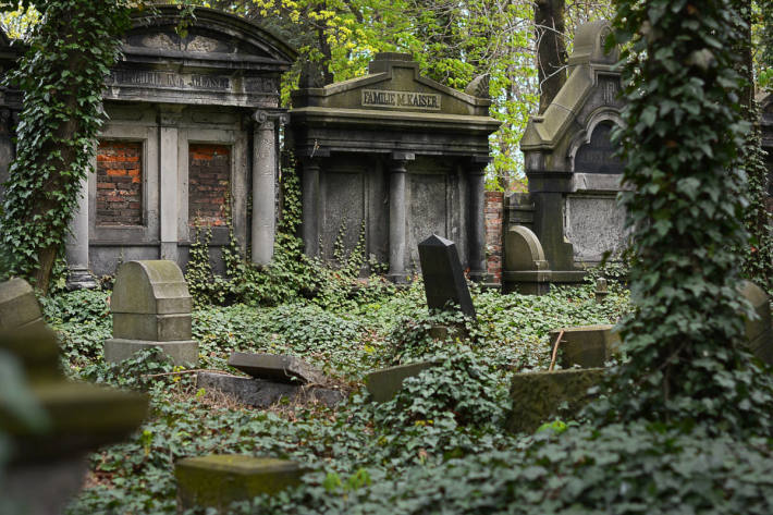 Gestern wurden in Vöcklabruck am Parkplatz des örtlichen Friedhofs die Leichen aufgefunden (Symbolbild)