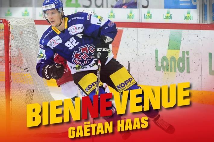 Der EHC Biel feiert die Rückkehr von Topstürmer Gaetan Haas.