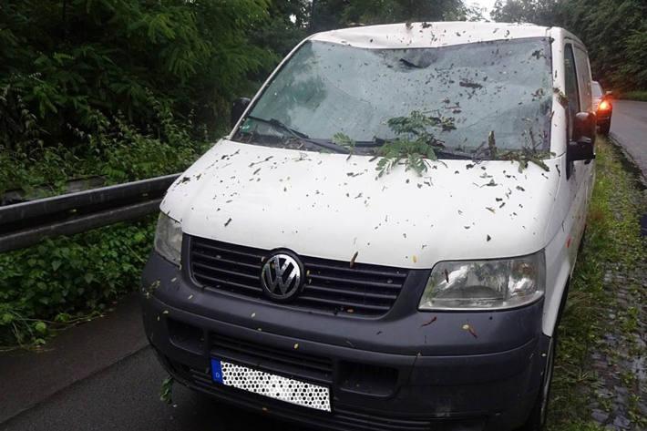 In Witten stürzte plötzlich von rechts ein circa 13 Meter hoher Baum auf die Fahrbahn und fiel auf die Frontscheibe des Transporters