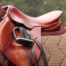 Hobbs Parker Horse and Saddlery Sales