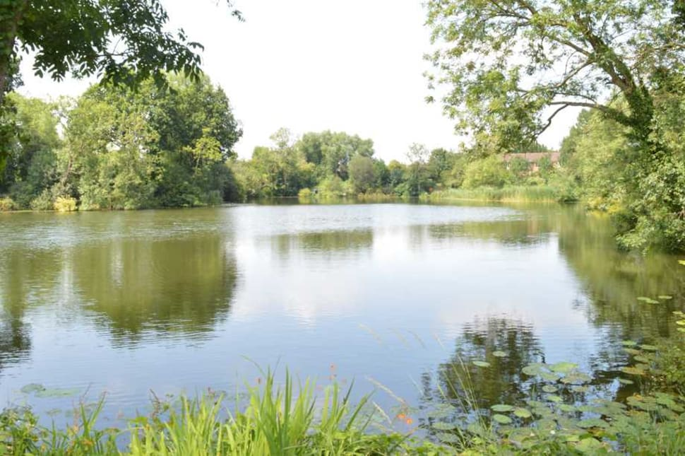2.5 Acre fishing lake