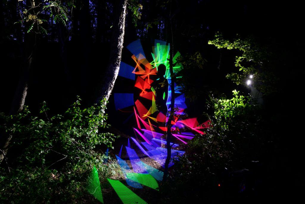 """Das Kunstwerk """"Beyond The Forest"""" ist Teil des Olympus Fotokunstpfades Zingst. (Quelle: Thomas Wildrich)"""