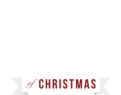 12 Days of Christmas Sale Now On