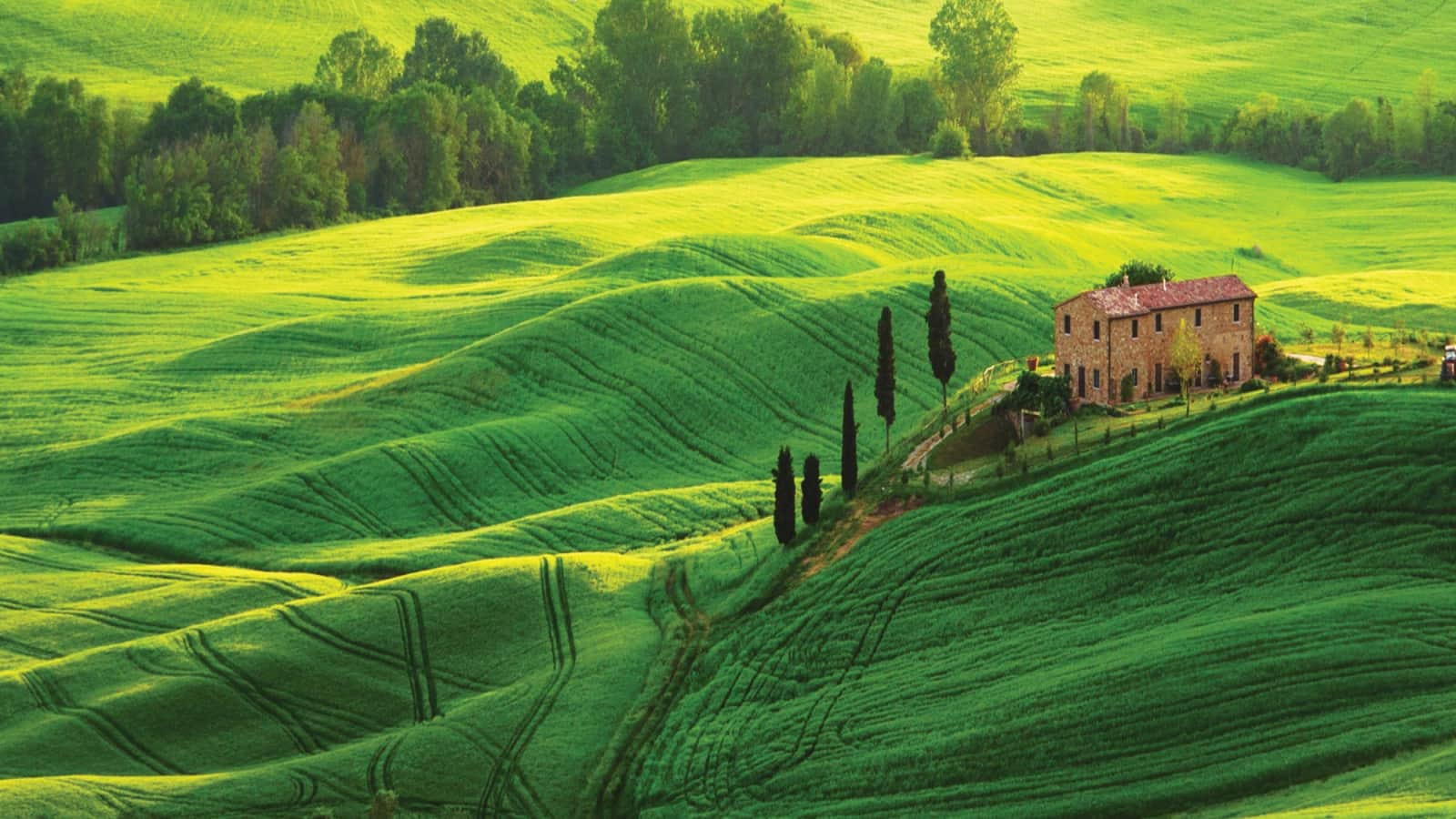 Tuscan Countryside Holidays Topflight Tuscany