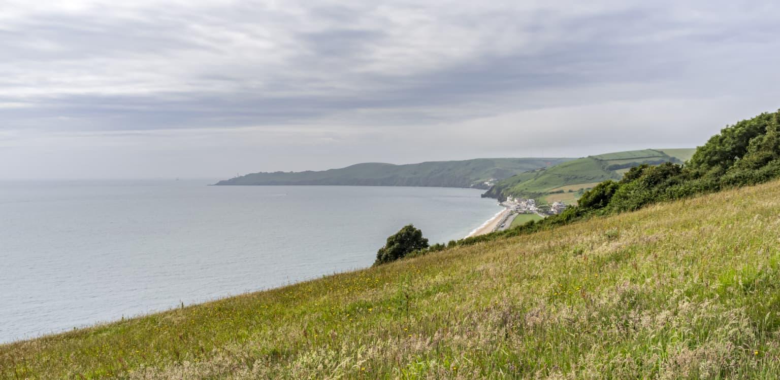 Beryl's Campsite, Devon
