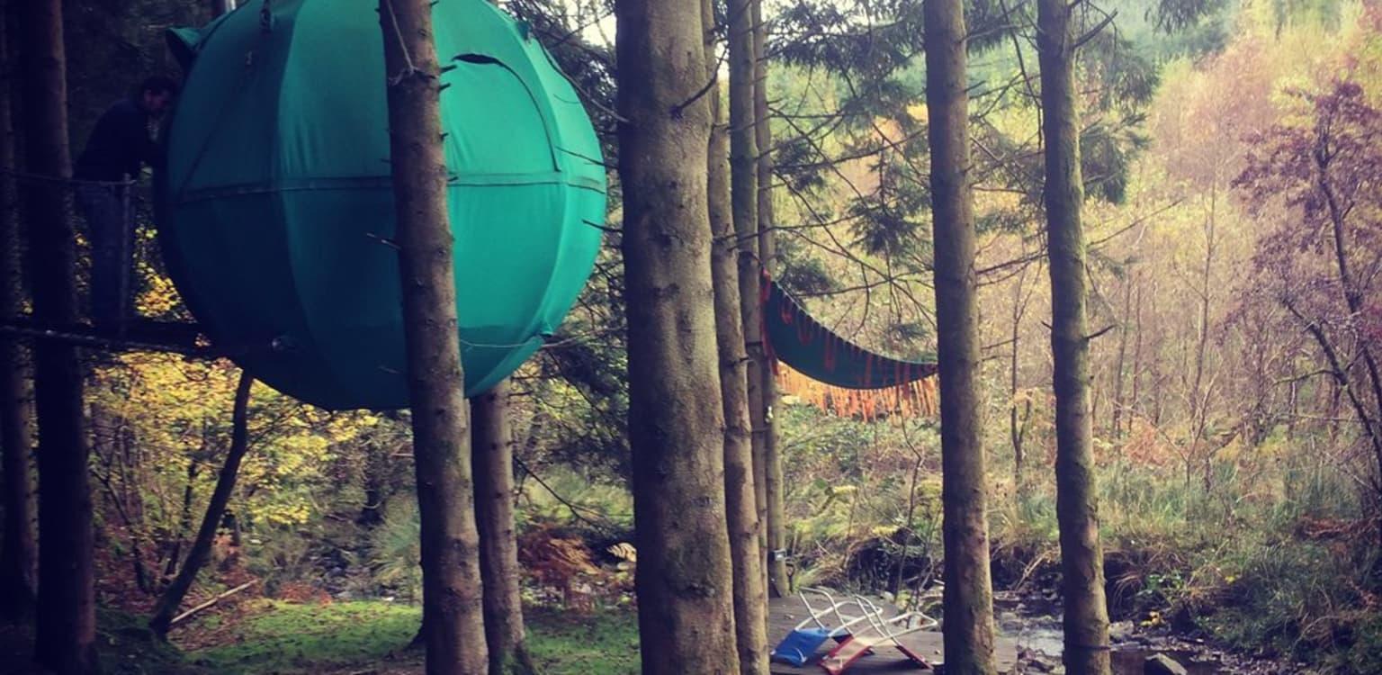 Red Kite Tree Tents, Powys