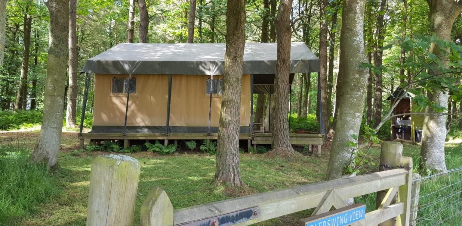 3.Ruberslaw Wild Woods Camping