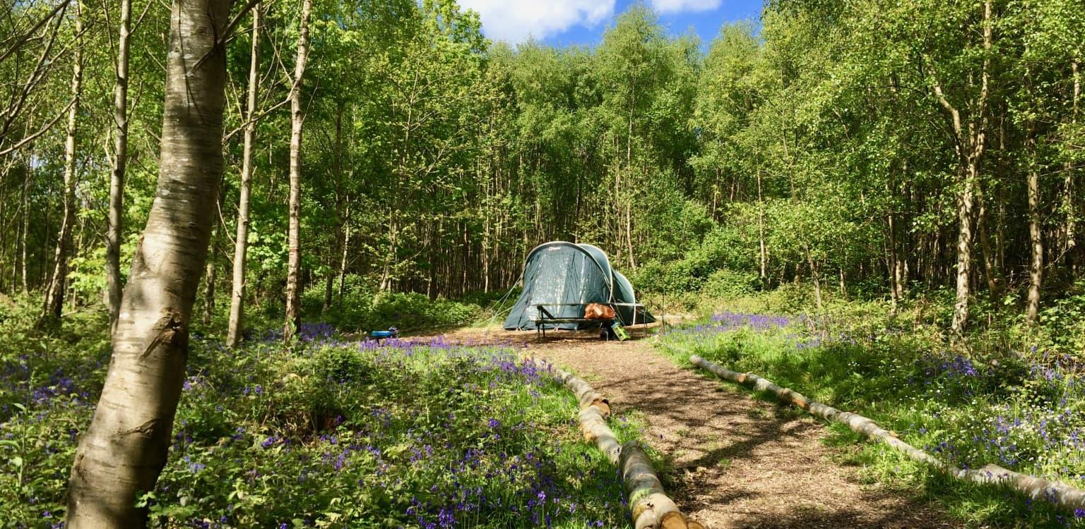 4. Beech Estate Campsite