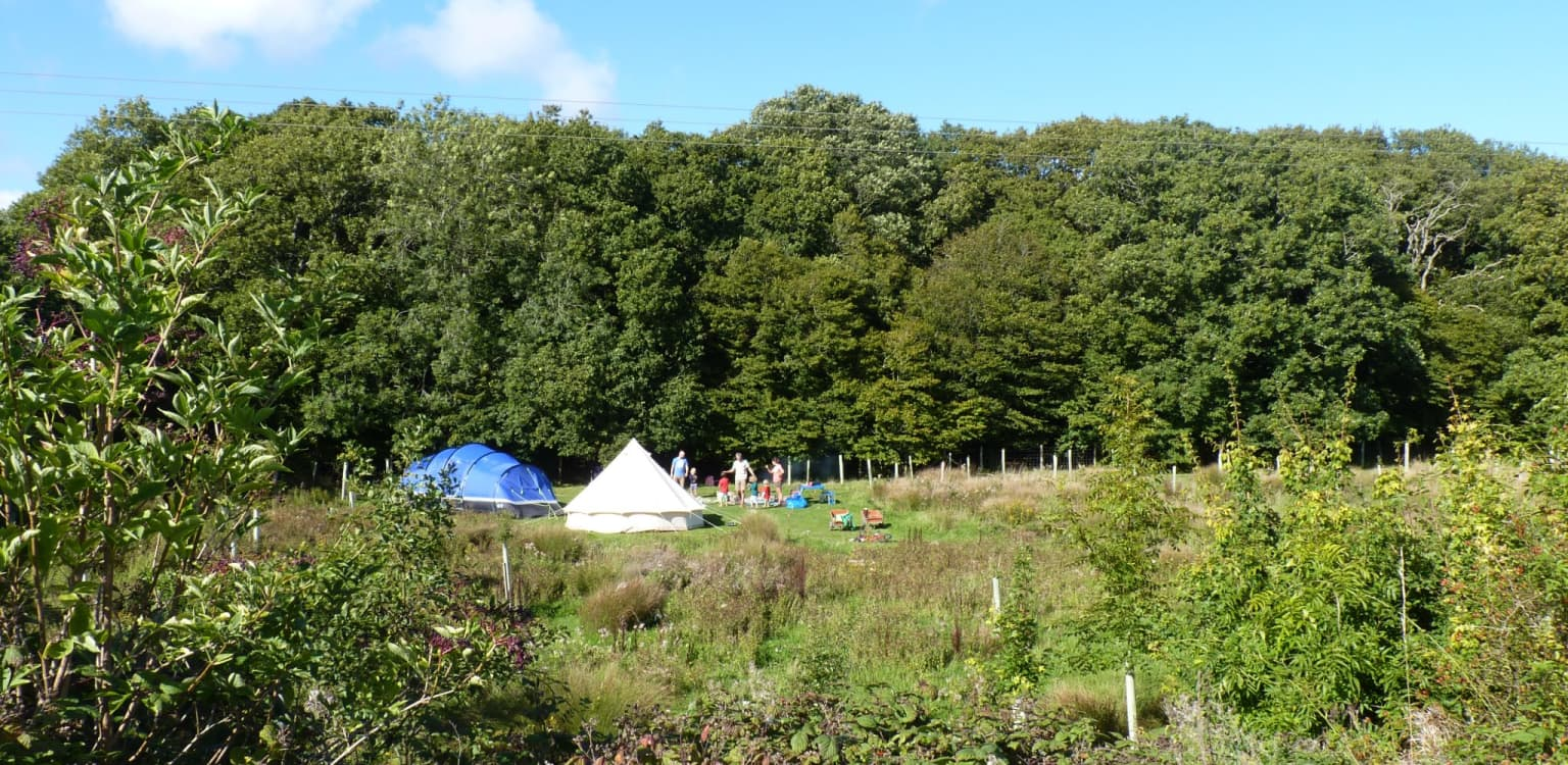 6. The Secret Campsite