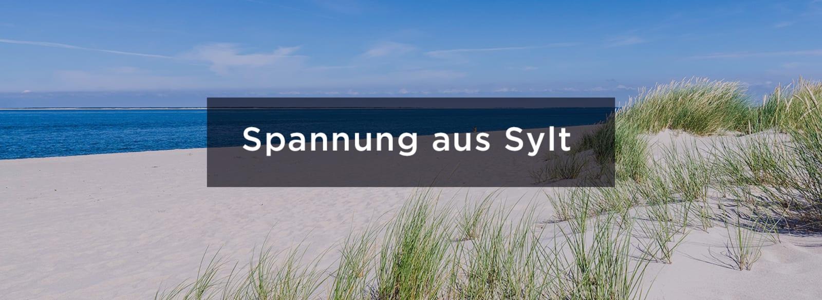 sylt_urlaubskrimis_Banner