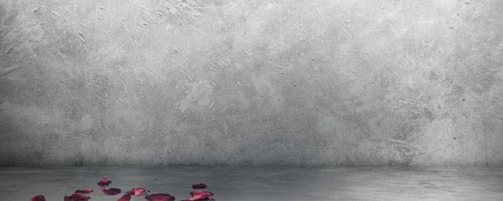 Hintergrund Vanitas Rosen