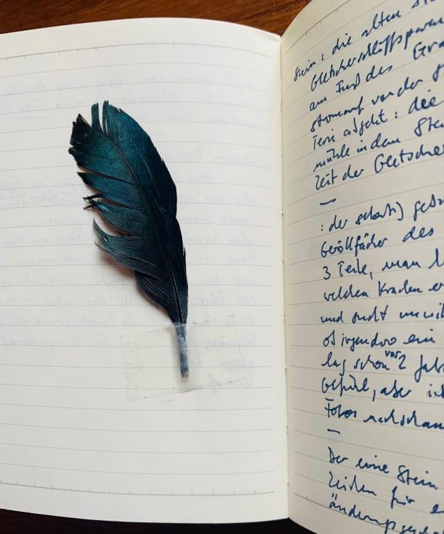 Ein aufgeschlagenes Notizbuch. Auf der linken Seite ist eine dunkle Birkhuhnfeder eingeklebt. Auf der rechten Seite sind hangeschriebene Notizen.
