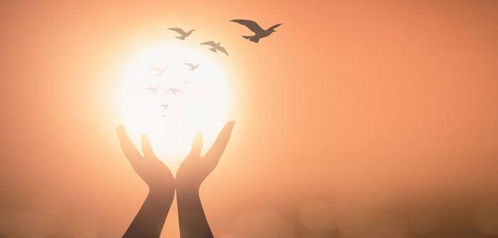 Hände über der Sonne mit Vögeln