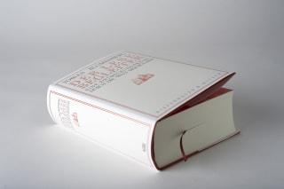 Der Lesebegleiter Zusatzmaterial