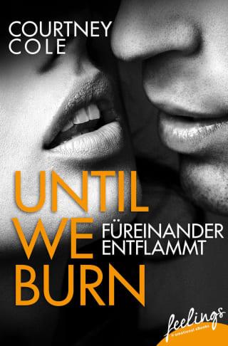 Until We Burn - Füreinander entflammt