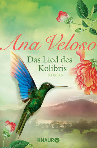 Das Lied des Kolibris