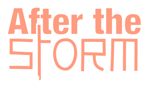 After the Storm - Pat Jeanne Davis