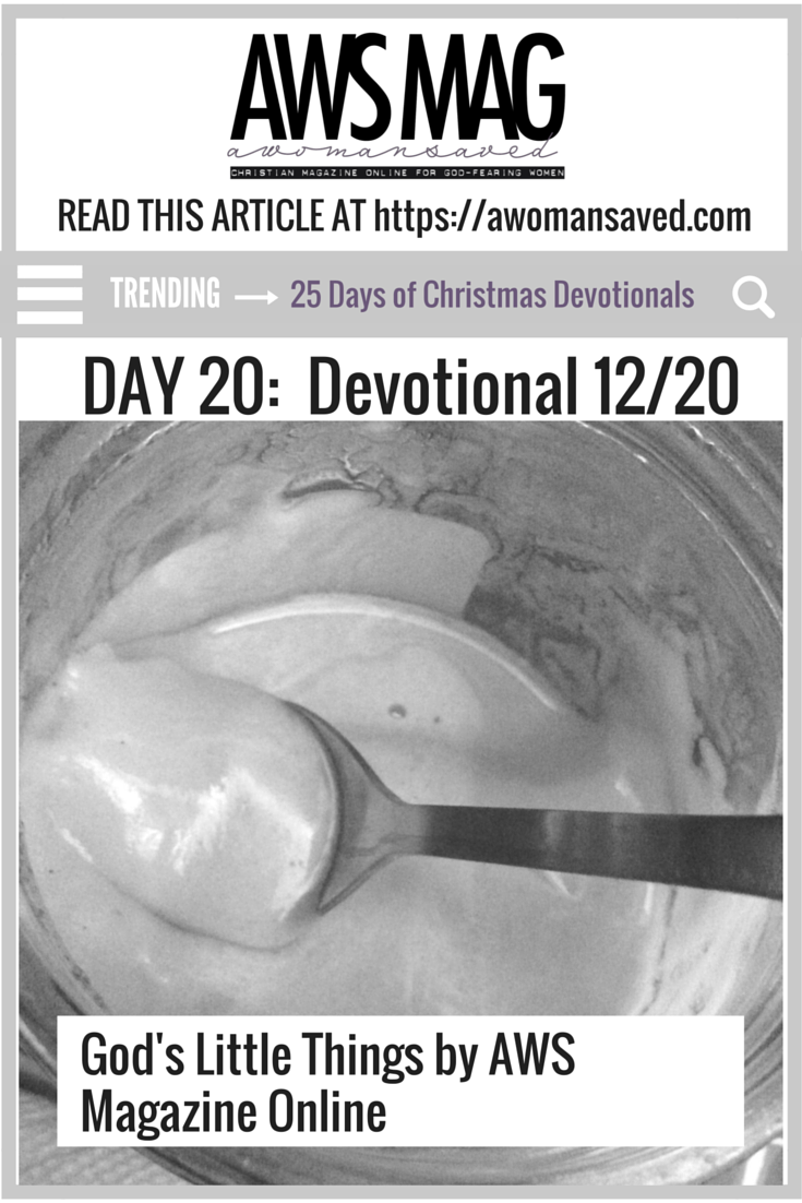 25 Days of Christmas Devotionals Day 20
