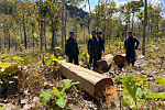 Police in O'Yadaw subdued and seized...
