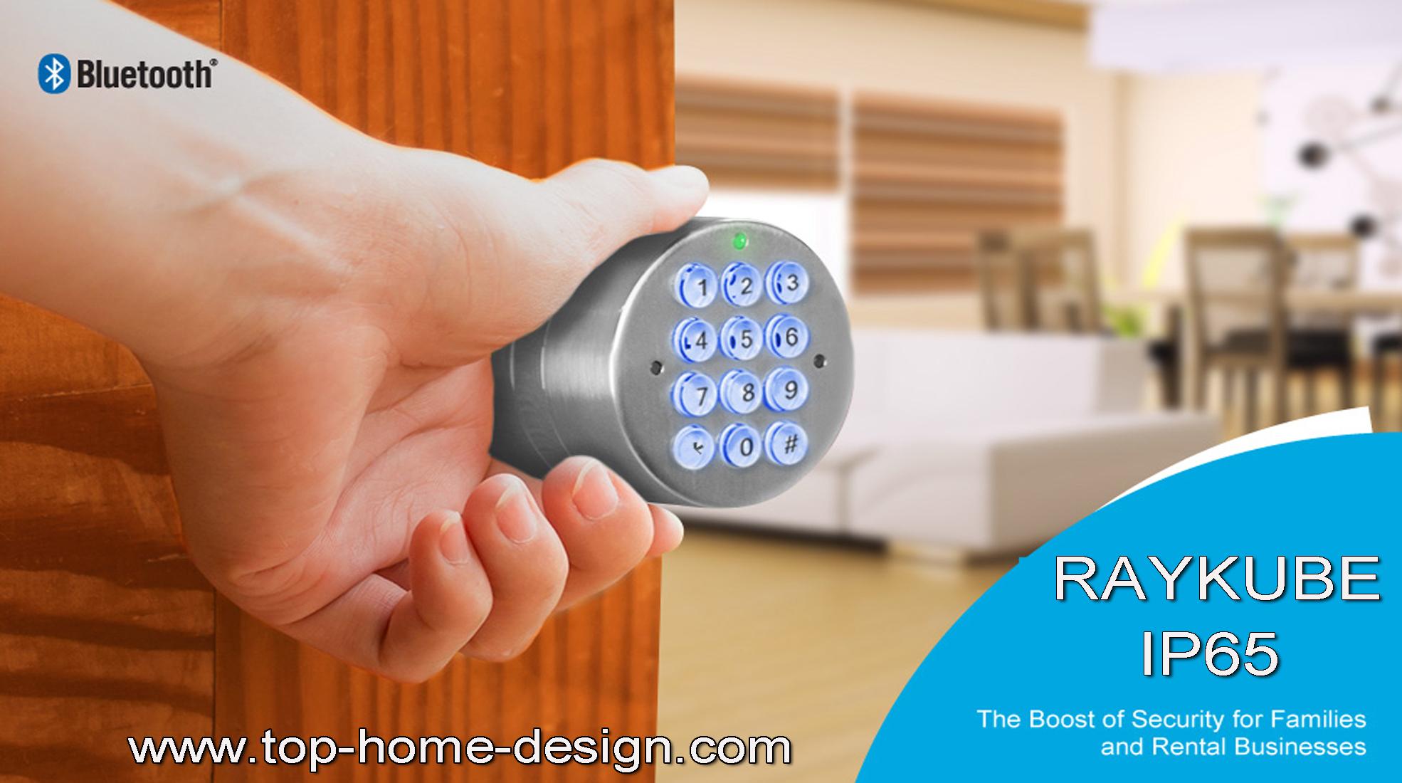 RAYKUBE Electronic Door