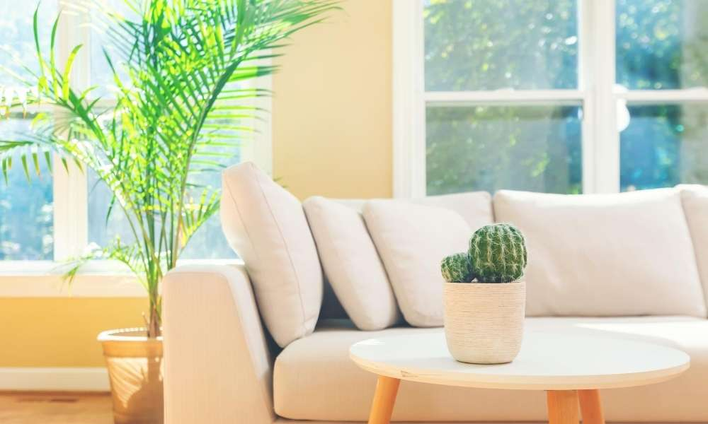 Modern Sectional sofa buying guide