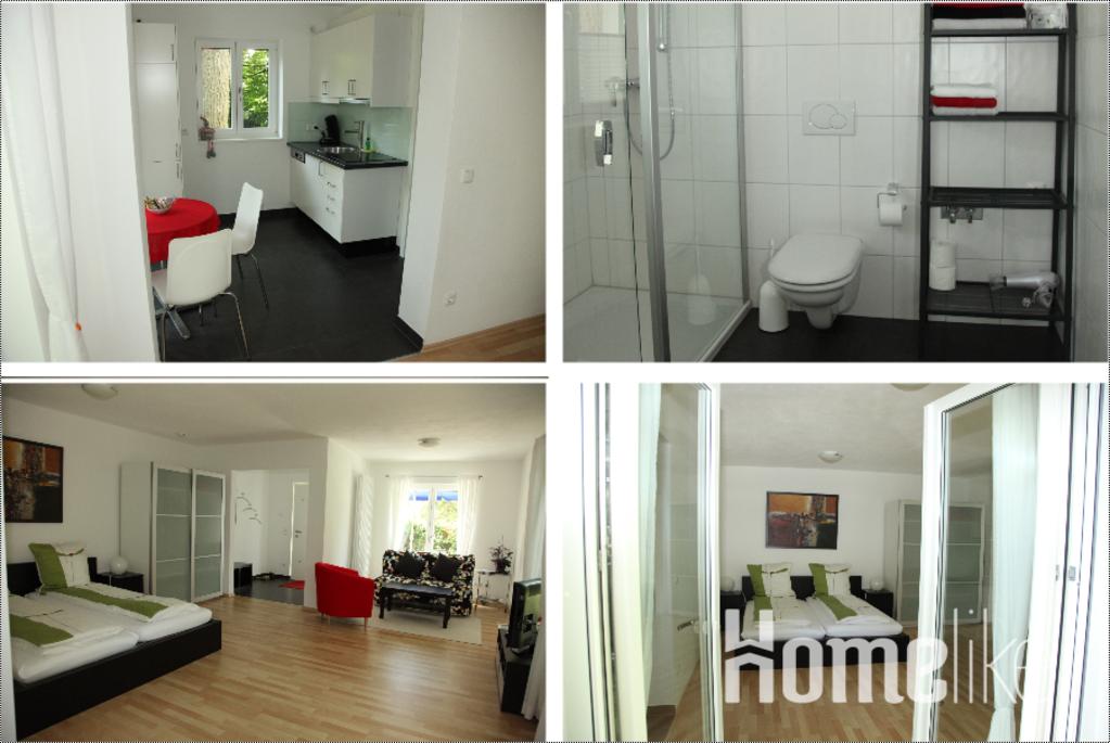 image 3 furnished 1 bedroom Apartment for rent in Nuremberg, Bavaria (Munich)