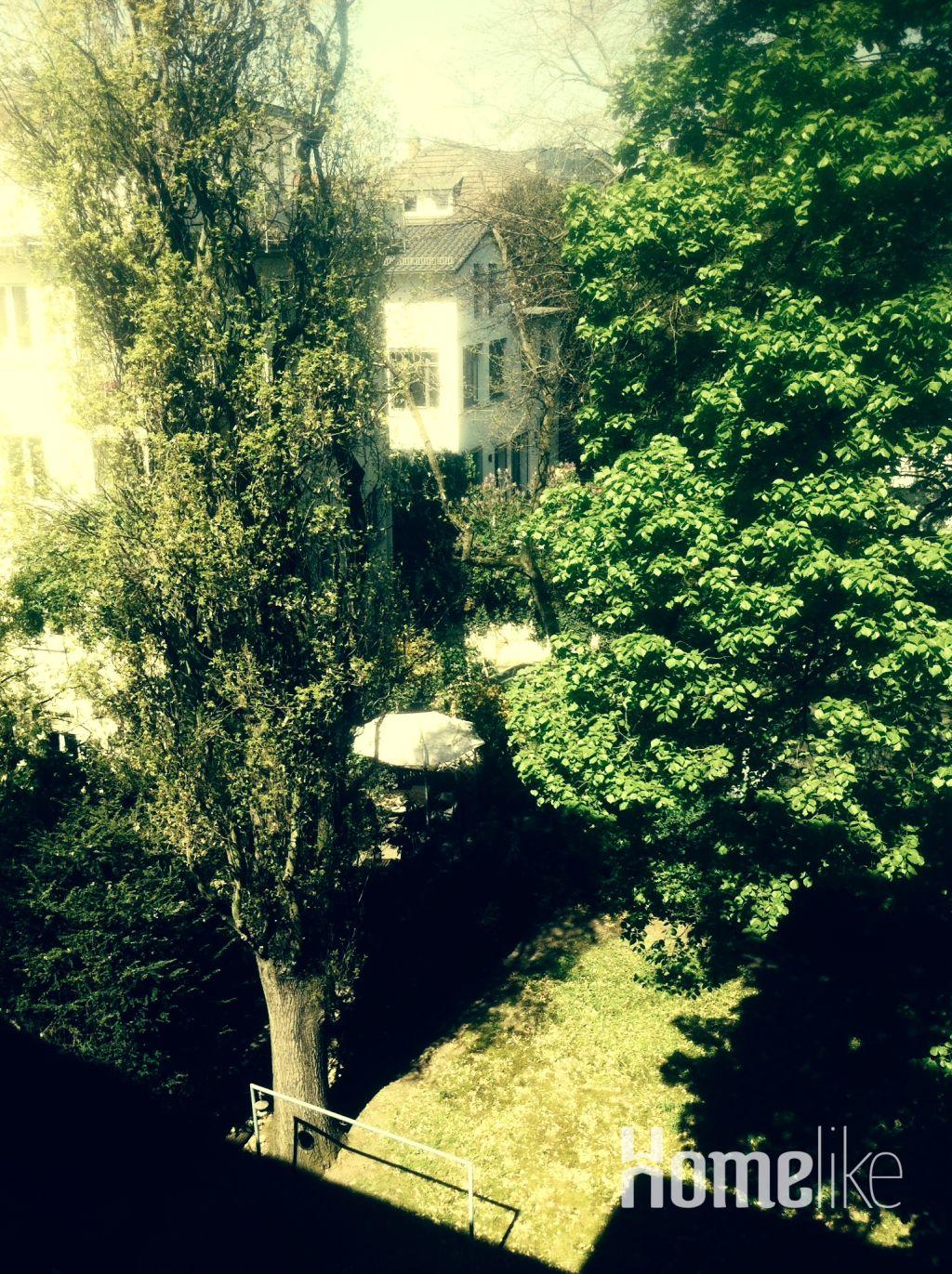 image 7 furnished 1 bedroom Apartment for rent in Frankfurt (Oder), Frankfurt Brandenburg