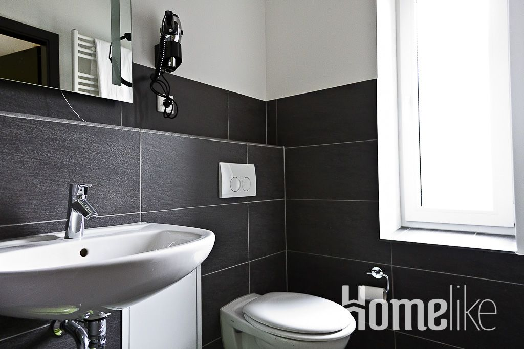 image 9 furnished 1 bedroom Apartment for rent in Mitte, Mitte