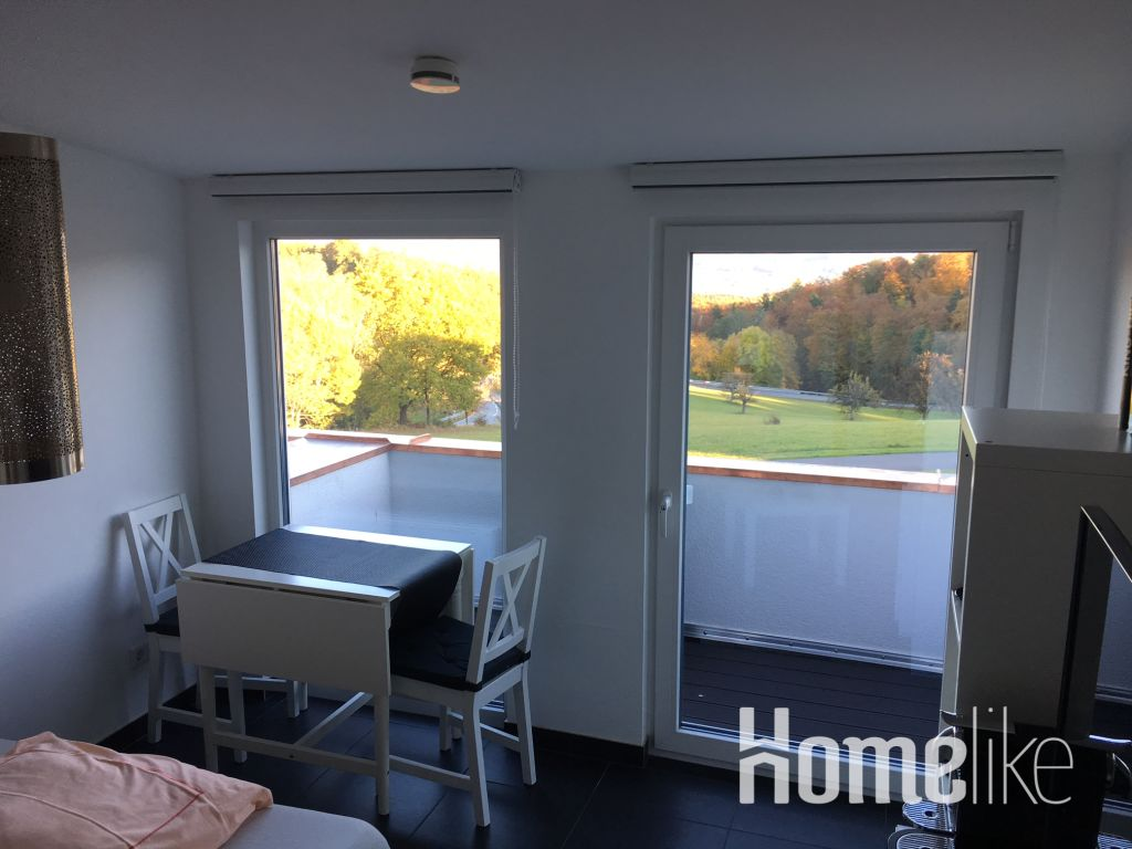 image 6 furnished 1 bedroom Apartment for rent in Morlenbach, Kreis Bergstrabe