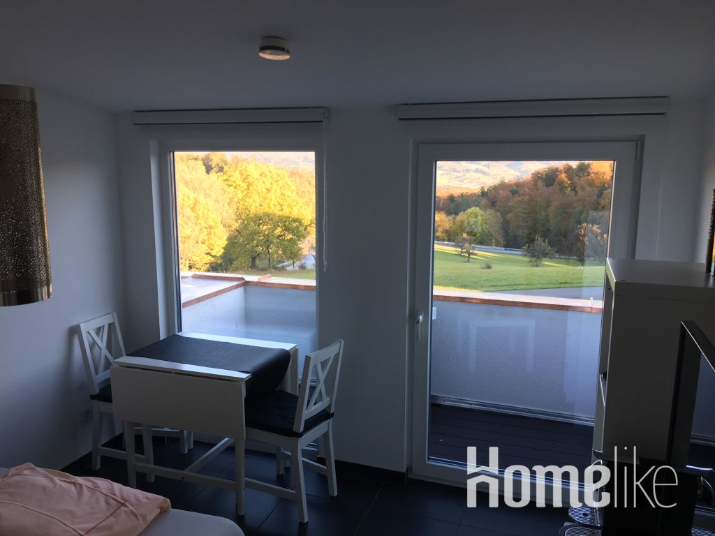 image 2 furnished 1 bedroom Apartment for rent in Morlenbach, Kreis Bergstrabe