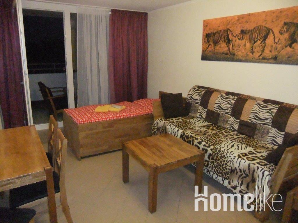 image 10 furnished 1 bedroom Apartment for rent in Nuremberg, Bavaria (Munich)