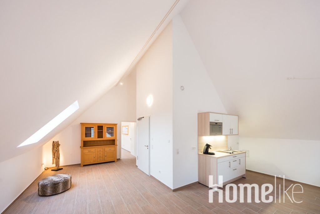 image 3 furnished 1 bedroom Apartment for rent in Mannheim, Baden-Wurttemberg