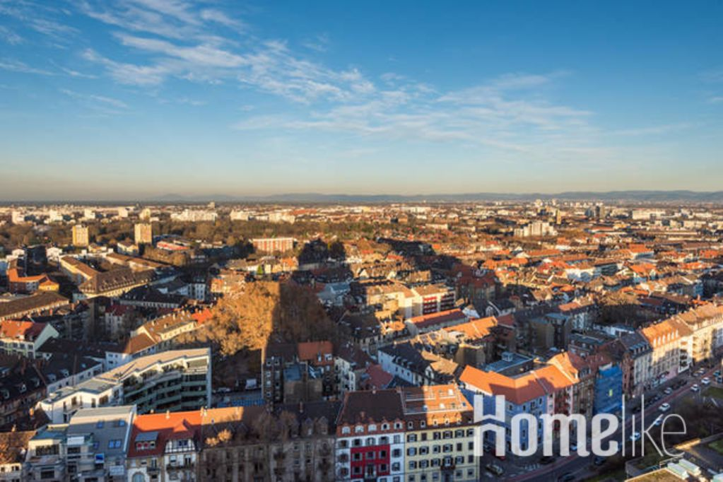 image 8 furnished 1 bedroom Apartment for rent in Mannheim, Baden-Wurttemberg