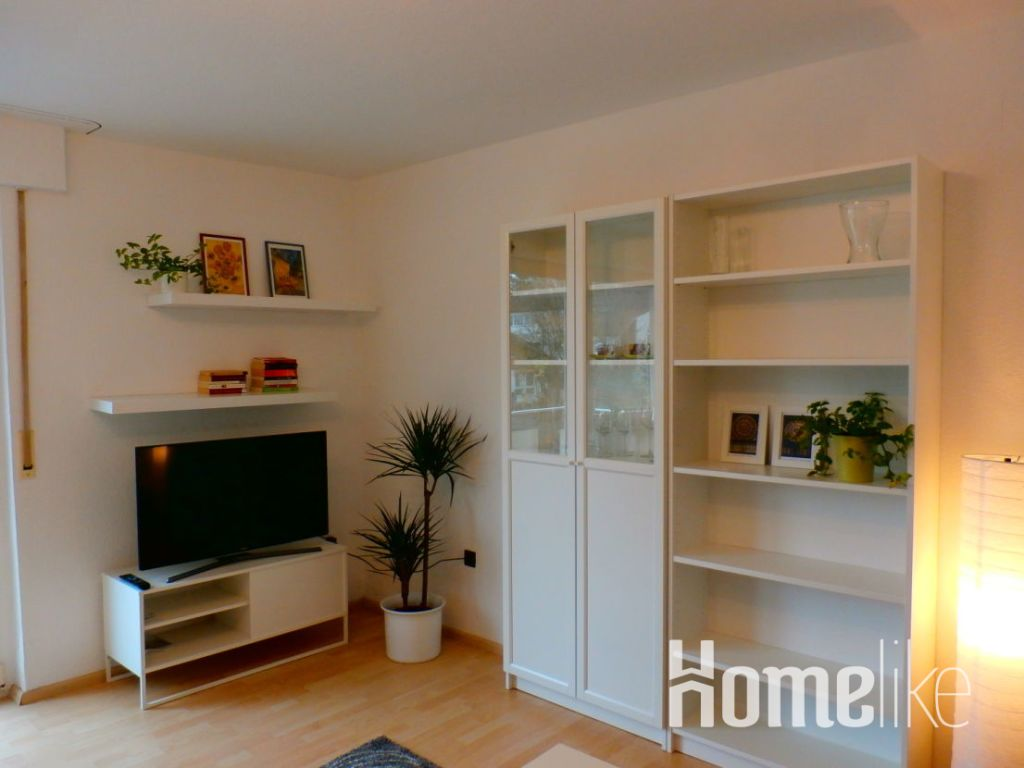 image 6 furnished 1 bedroom Apartment for rent in Ludwigsburg, Baden-Wurttemberg