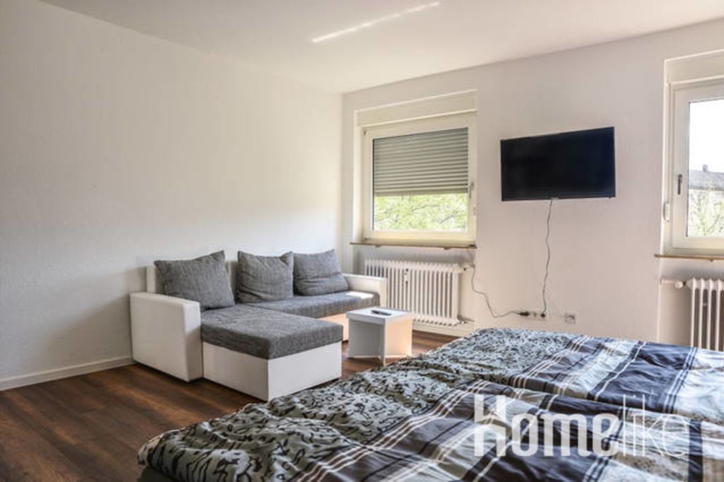 image 4 furnished 1 bedroom Apartment for rent in Mannheim, Baden-Wurttemberg