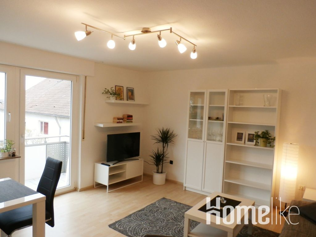 image 1 furnished 1 bedroom Apartment for rent in Ludwigsburg, Baden-Wurttemberg