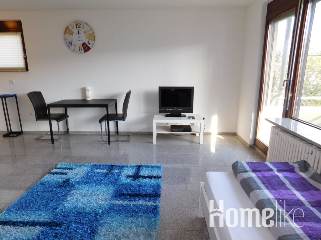 image 6 furnished 1 bedroom Apartment for rent in Stuttgart, Baden-Wurttemberg