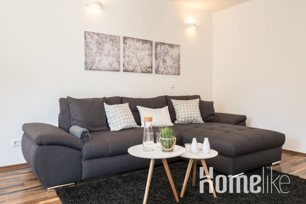 image 7 furnished 2 bedroom Apartment for rent in Mainz, Mainz