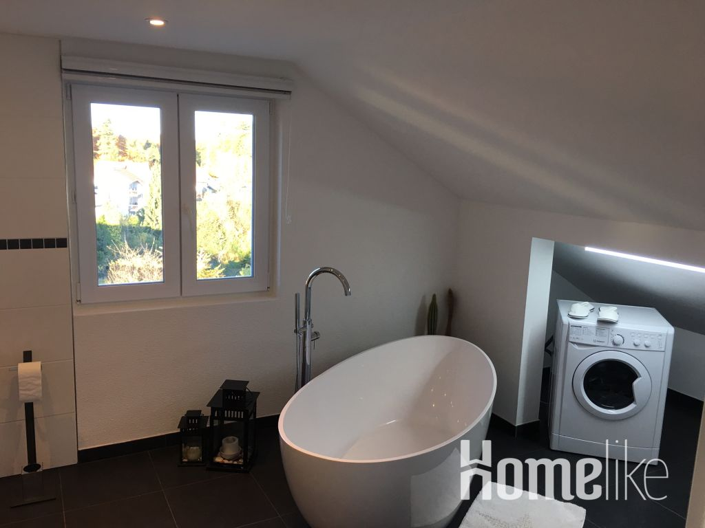 image 10 furnished 1 bedroom Apartment for rent in Morlenbach, Kreis Bergstrabe