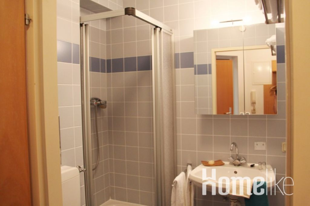 image 4 furnished 1 bedroom Apartment for rent in Hietzing, Vienna