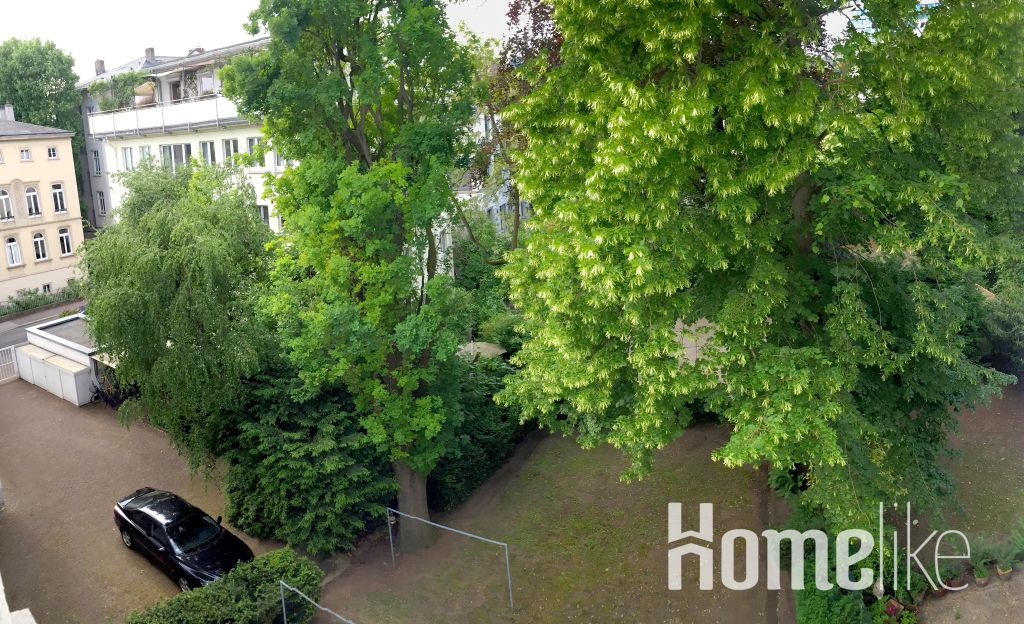 image 8 furnished 1 bedroom Apartment for rent in Frankfurt (Oder), Frankfurt Brandenburg