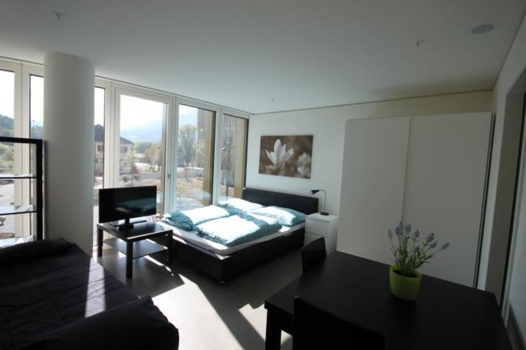 image 3 furnished 1 bedroom Apartment for rent in Lucerne, Luzern
