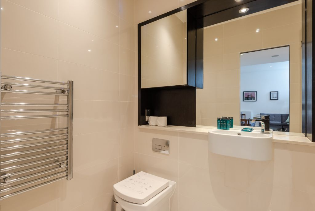 image 8 furnished 1 bedroom Apartment for rent in Kings Cross, Camden
