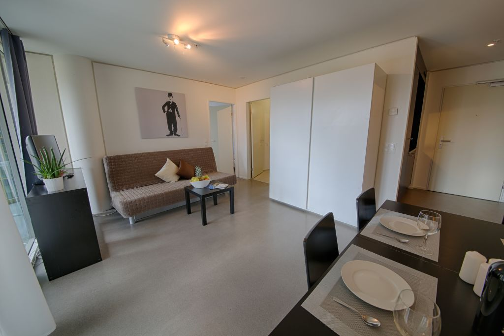 image 7 furnished 1 bedroom Apartment for rent in Lucerne, Luzern