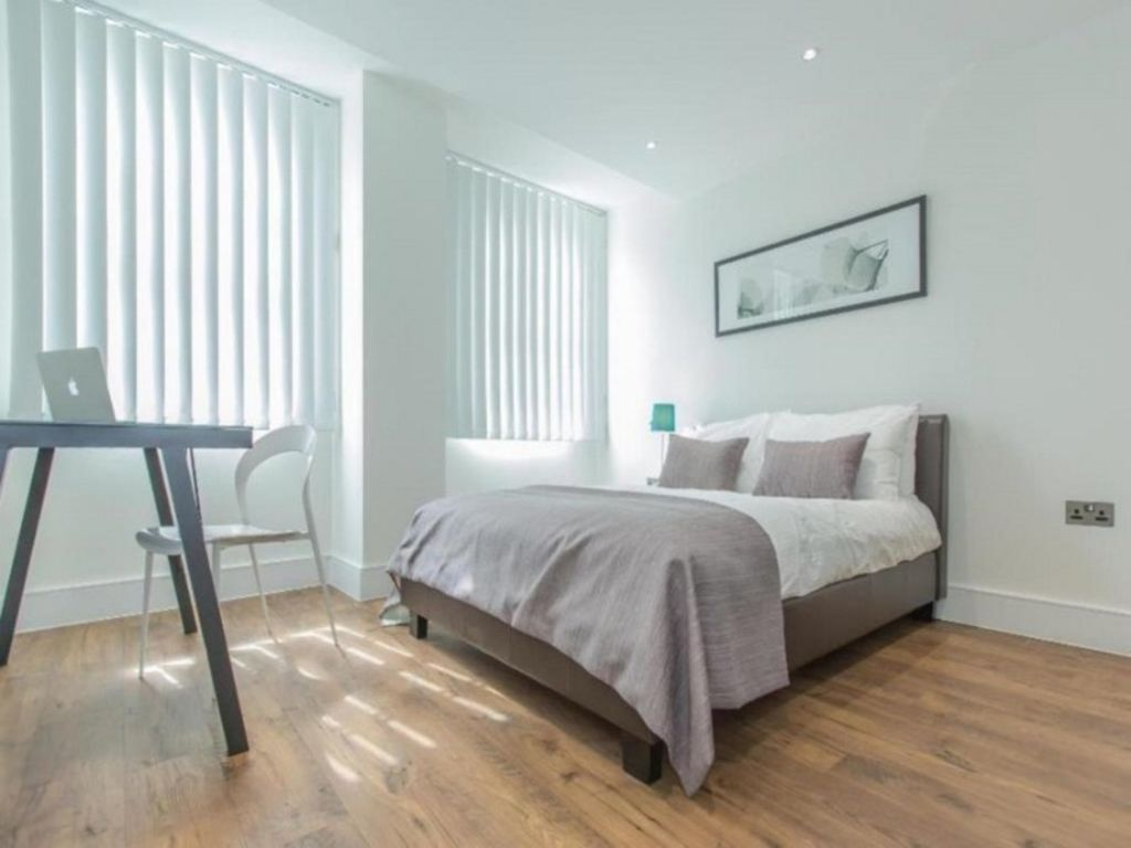 image 1 furnished 1 bedroom Apartment for rent in Whitechapel, Tower Hamlets